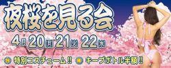 オトナのお花見❤「夜桜を見る会」開催!